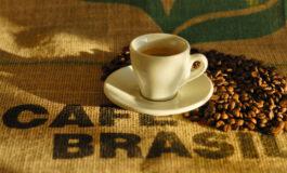 Exportação de café em nível mundial totaliza 65,4 milhões de sacas em seis meses