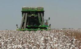 Agricultura – equilíbrio entre processos e produtos