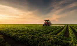 Tecnologias poupa-terra preservaram mais de 70 milhões de hectares em áreas plantadas com soja no Brasil