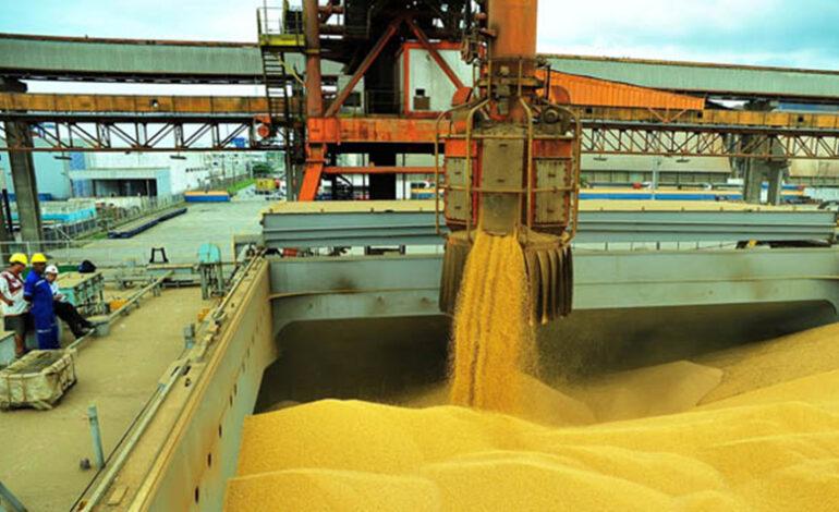 Exportações do agronegócio em junho ultrapassam os US$ 12 bilhões