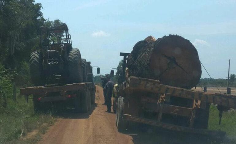 Caminhões, trator e motosserra usados em crimes ambientais são apreendidos em Pimenteiras do Oeste, RO