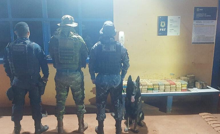 Cão policial encontra 116 kg de drogas em reboque de carro na BR-425 em RO