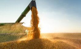 Agronegócio bate recorde de receita com exportações, mas problemas persistem